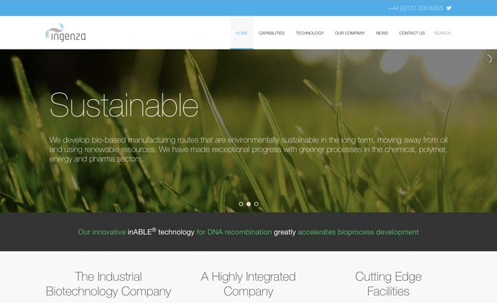Global Acorn Website Preview
